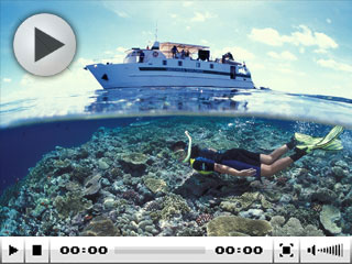Liveaboard diving in Australia on the Great Barrier Reef with the Undersea Explorer