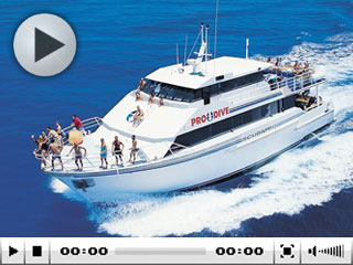 Race out to the Outer Barrier Reef, off the Cairns coast, with the Scubapro