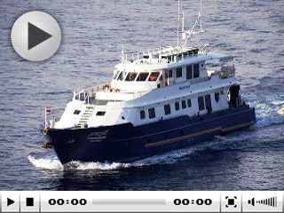 Phuket liveaboard, the Panunee