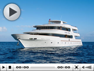 Maldives liveaboards: the MV Carpe Vita Explorer