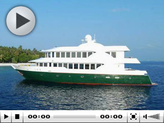 Maldive liveaboard diving safaris with the MV Virgo