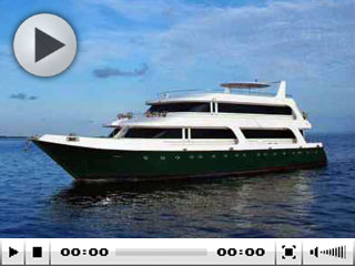 The Maldives liveaboard, the MV Leo