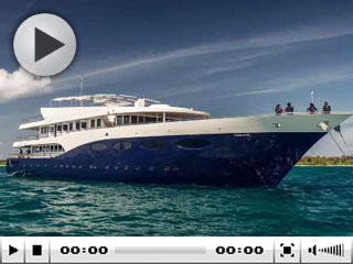 Maldive cruises with Scubaspa Ying - diving and spa treatments