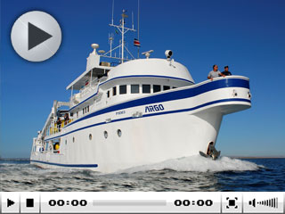 The MV Argo specialises in Cocos diving cruises