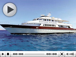 Emperor Superior - Red Sea Liveaboard vessel
