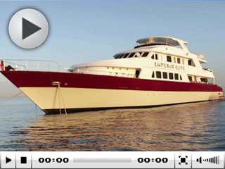 Red Sea Liveaboards: MY Emperor Elite