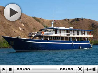 Indonesia liveaboard diving with MV Ambai in Komodo
