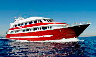 Red Sea diving cruises with MY Andromeda