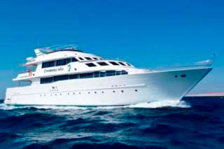 Red Sea diving cruises with Contessa Mia