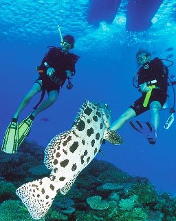 PADI Advanced Open Water Diver with Dive The World