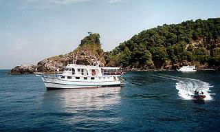 The Dolphin Queen in the Similan Islands