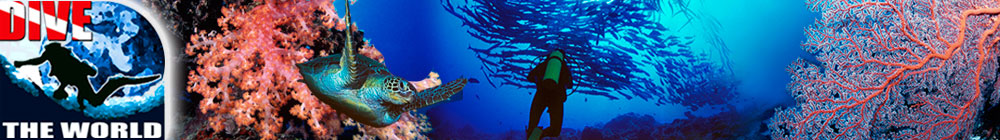 Dive The World - Special Offers and Dive News - Click for Blog Home Page
