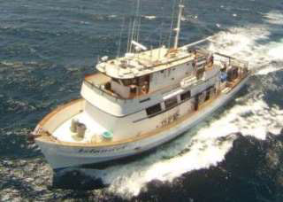 Guadelupe Island liveaboard diving trips in Mexico with MV Islander - photo courtesy of divingworld.nl