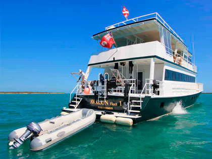 Discover our Cuba liveaboard adventure opportunities