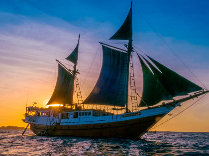 Discover our Cenderawasih Bay liveaboard adventure opportunities