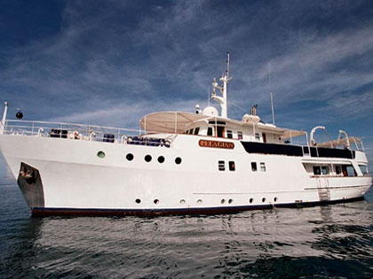 Discover our Wakatobi liveaboard adventure opportunities
