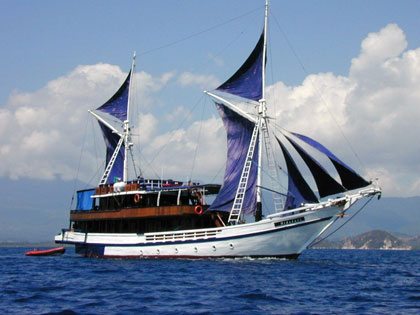 Discover our Raja Ampat liveaboard adventure opportunities