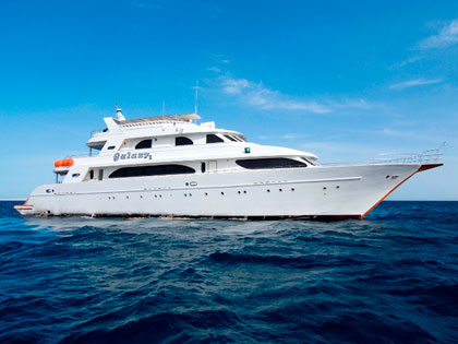 Discover our Red Sea liveaboard adventure opportunities
