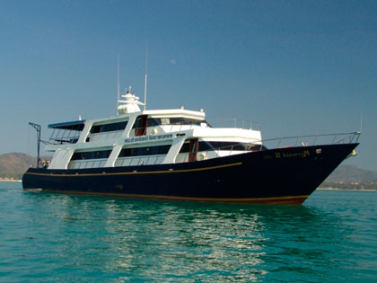 Discover our Thailand liveaboard adventure opportunities