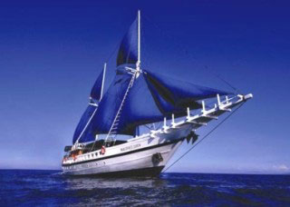 Liveaboard diving on the Maldives Siren