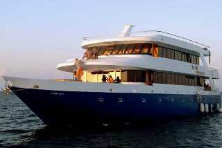 The Manta Cruise liveaboard offers you Maldives diving cruises