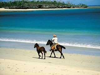 Horse riding is available at Namale Resort, Savusavu - photo courtesy of Fiji Visitors Bureau