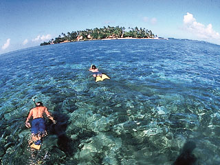 Snorkelling in Fiji - photo courtesy of Fiji Visitors Bureau