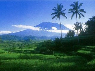 Picturesque mountains and rice fields scenery can be seen throughout Indonesia