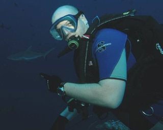 Diving with grey reef sharks in Palau, Micronesia