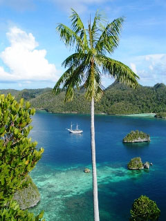 The world-famous Raja Ampat