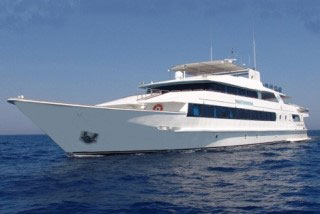 Sudan liveaboard, the Royal Evolution