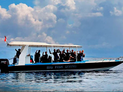 See our daytrip diving options from Lembongan Island