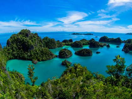 More details on these Raja Ampat dive resort options