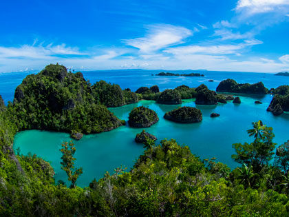 More details on these dive resort options for Raja Ampat