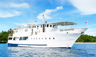 Liveaboard diving tours in the Philippines with Seadoors