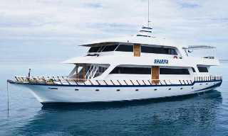 Maldives Islands liveaboard, the MY Sharifa