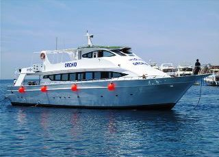 The Orchid Sharm El Sheikh day trip boat in the Red Sea