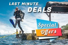 View our special offers and last minute deals on the Dive The World Blog (opens in a new window)