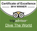 Dive The World Trip Advisor Award 2014
