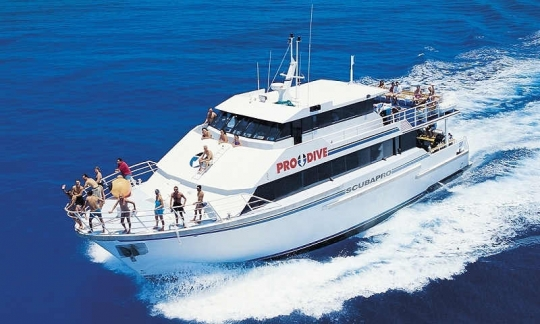 Liveaboard diving holiday in cairns scubapro great barrier reef trip report - Pro dive cairns ...