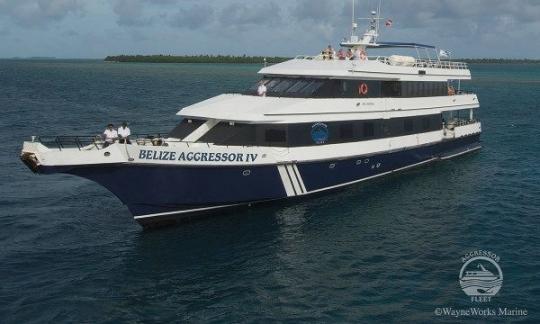 Belize Aggressor IV