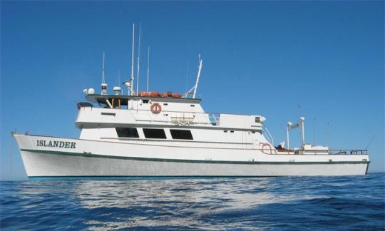 MV Islander