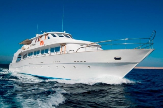 ... Liveaboard diving tours in the Red Sea, Egypt, with M/Y Dreams ...