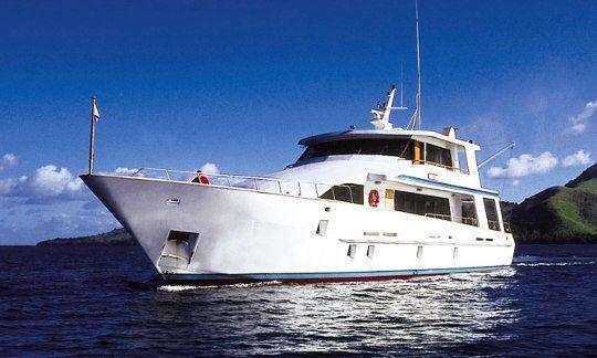 Fiji Dive Specials