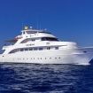 MY Seawolf Soul: a luxurious and modern Red Sea dive charter