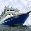 The MV Andaman Tritan dive cruises in Indonesia