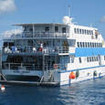 Ocean Quest specialising in diving the Cairns Great Barrier Reef