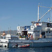 The M/V Islander liveaboard in Mexico