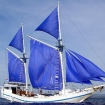 Liveaboard charters in Indonesia with Tidak Apa'Pa