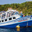 The Dolphin Queen liveaboard at anchor in the Similan Islands